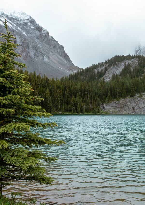 Easy Day Hike in Alberta – Chester Lake Trail