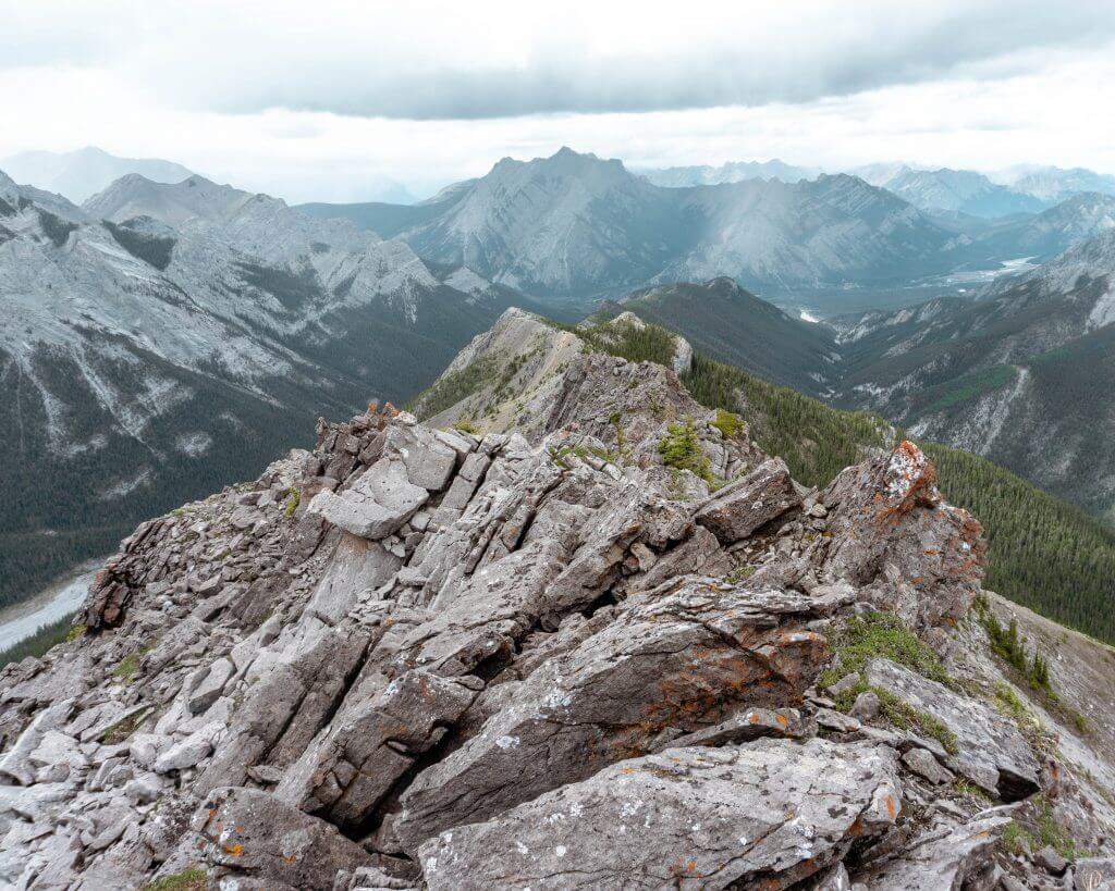 Summit of Wasootch Ridge, Kananaskis.
