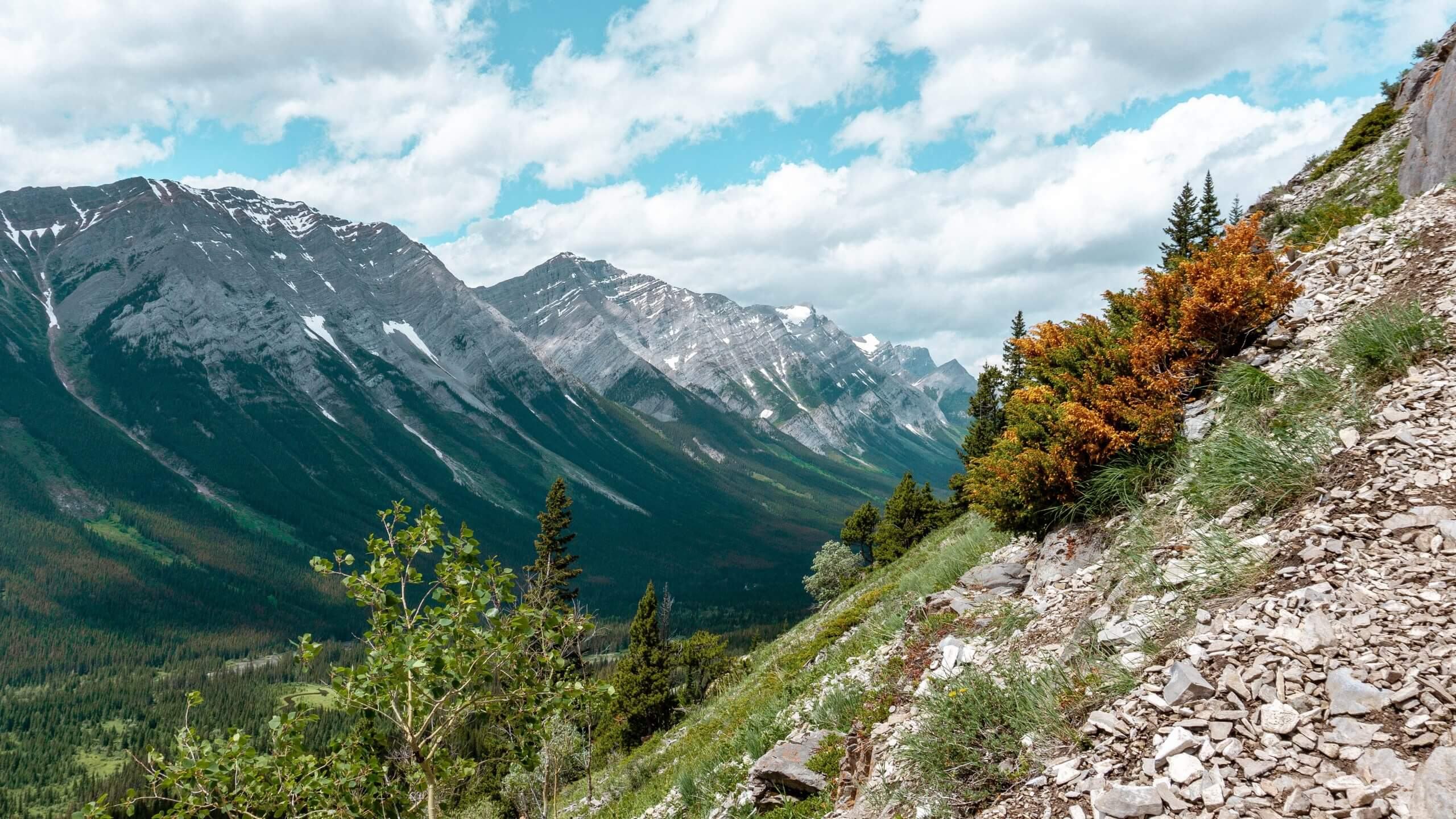 Quick and challenging day hike in Alberta – Grizzly Peak