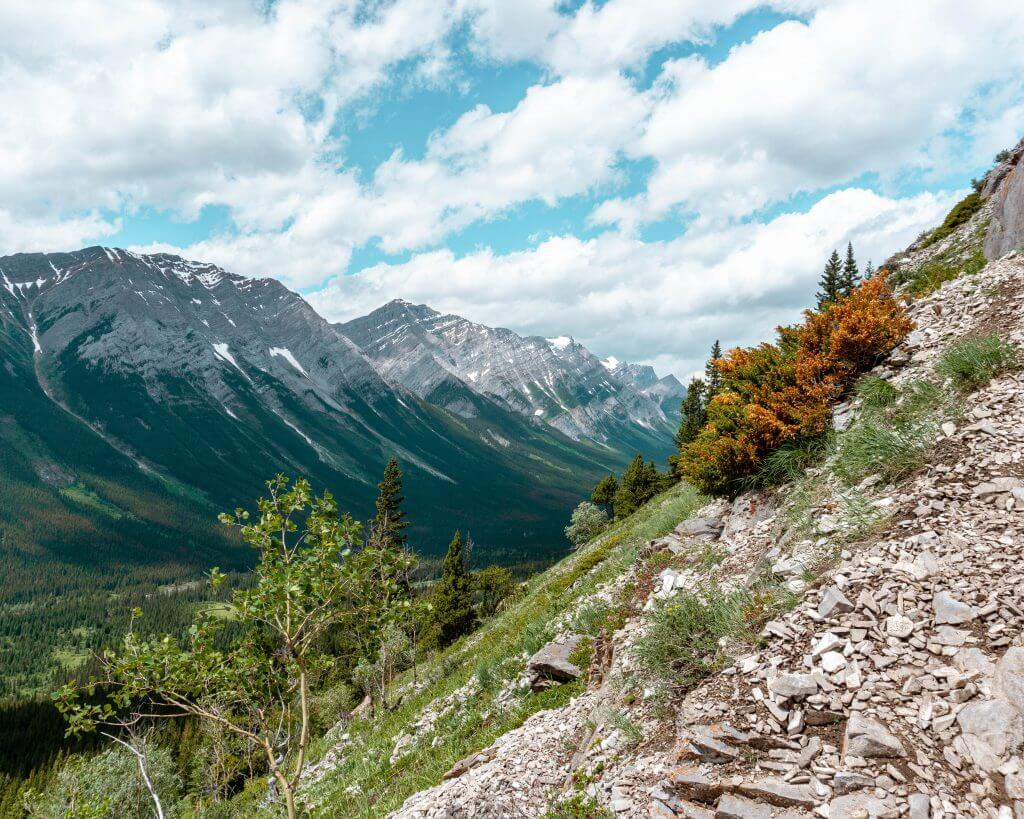 Quick and challenging day hike in Alberta - Grizzly Peak - Red White Adventures