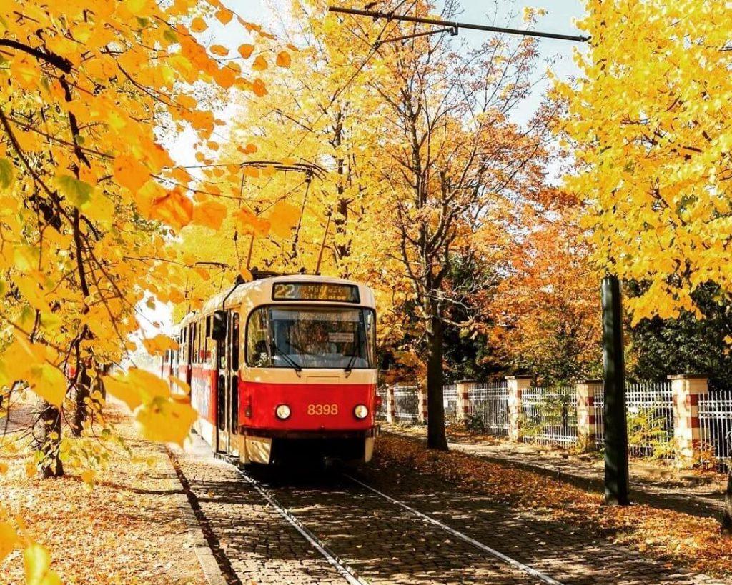 Tram line in Prague in the fall.