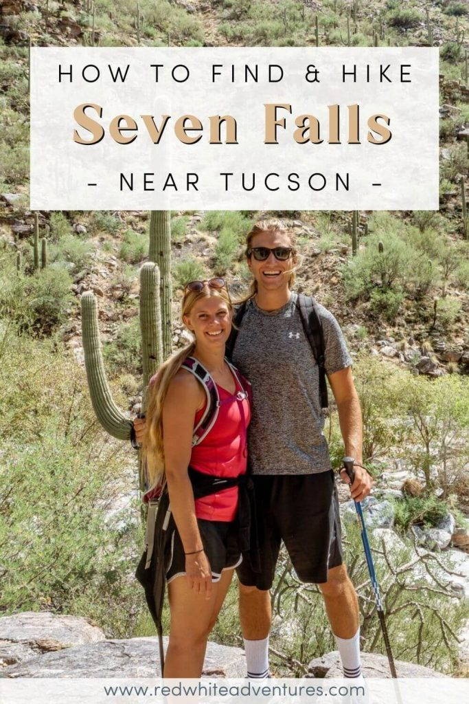 Couple standing in front of cacti in the Tucson desert