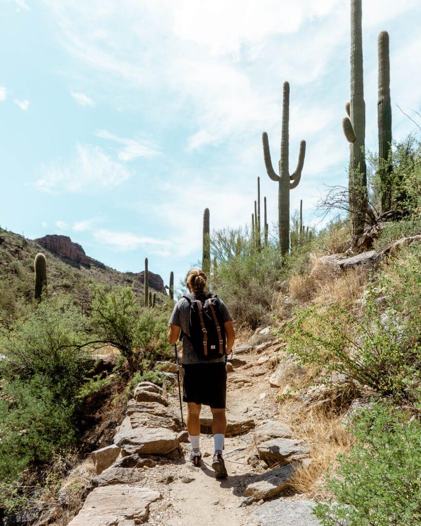 Dom hiking in the Arizona desert.