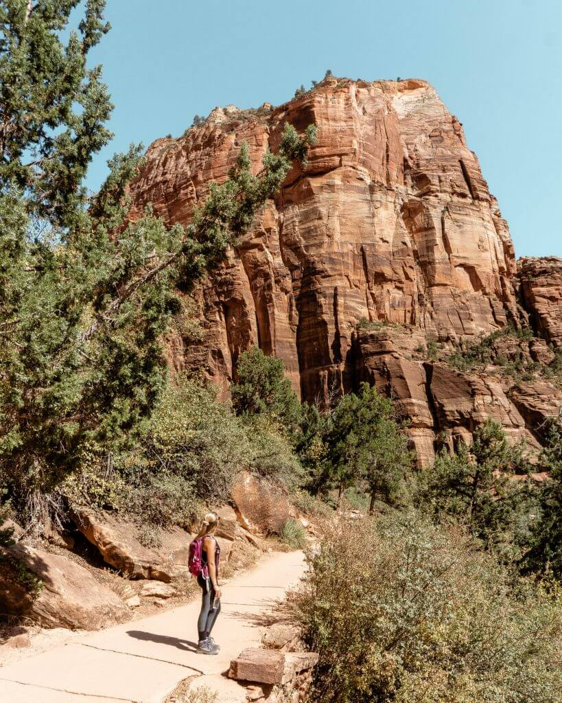 Zion National Park in the summer.