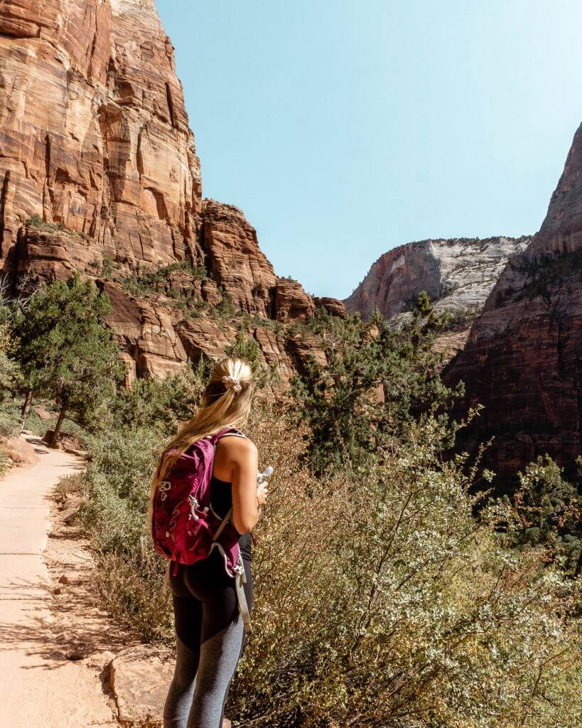 Hiking trail in Zion National Park.