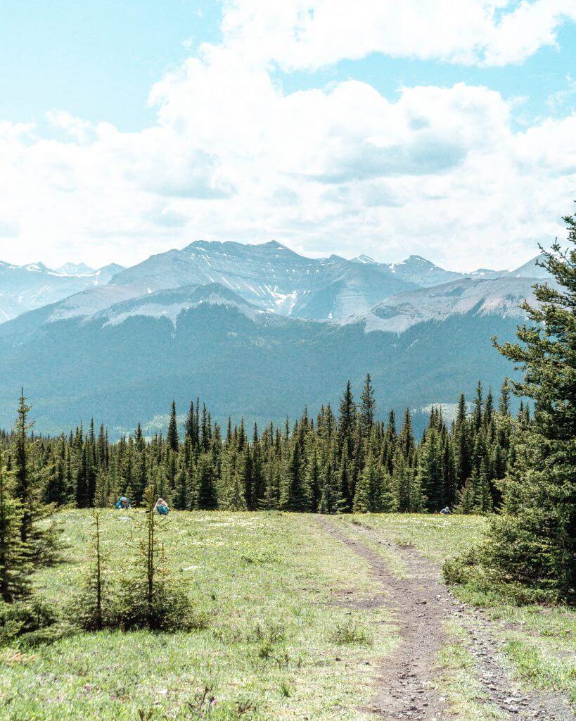Jumpingpound summit trail.