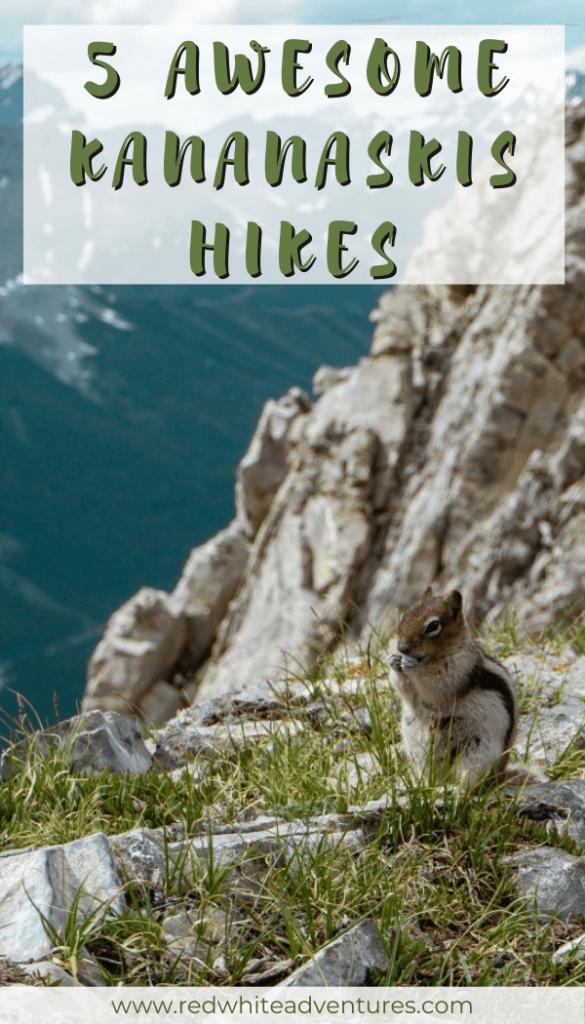 Pin for Pinterest of beautiful hikes in Kananaskis