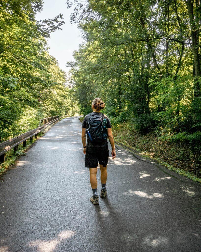 Dom walking in the country near Karlstejn
