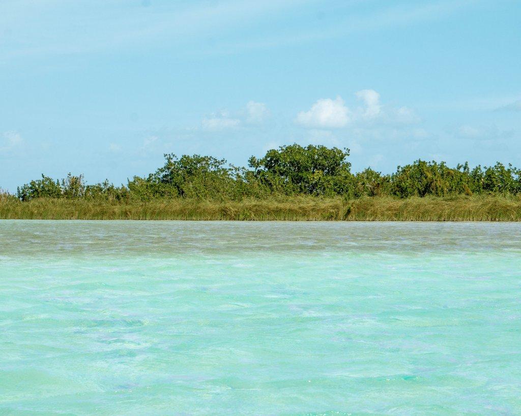 Lagoon near Sian Ka'an.