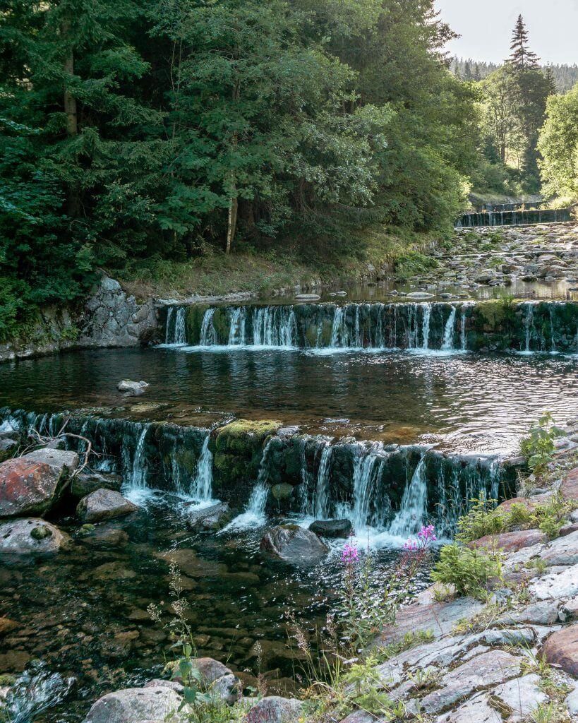 Beautiful free flowing water near Pec Pod Snezkou.