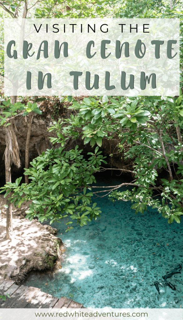 Pin for pinterest of cenotes near Tulum.