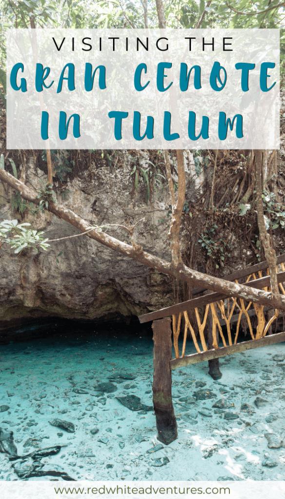 Pin for Pinterest of Gran Cenote in Tulum.