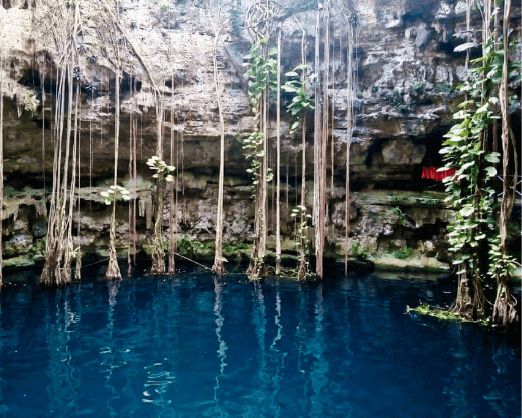 One of the best cenotes in Yucatan is Cenote Oxman.