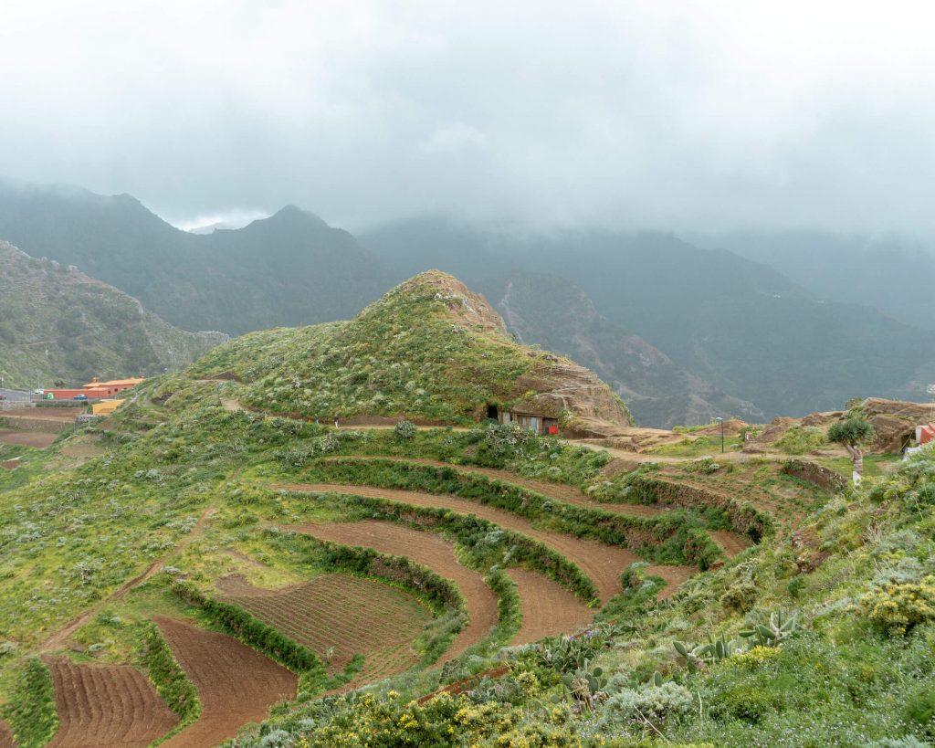 Terrace fields near Chinamada, Tenerife.