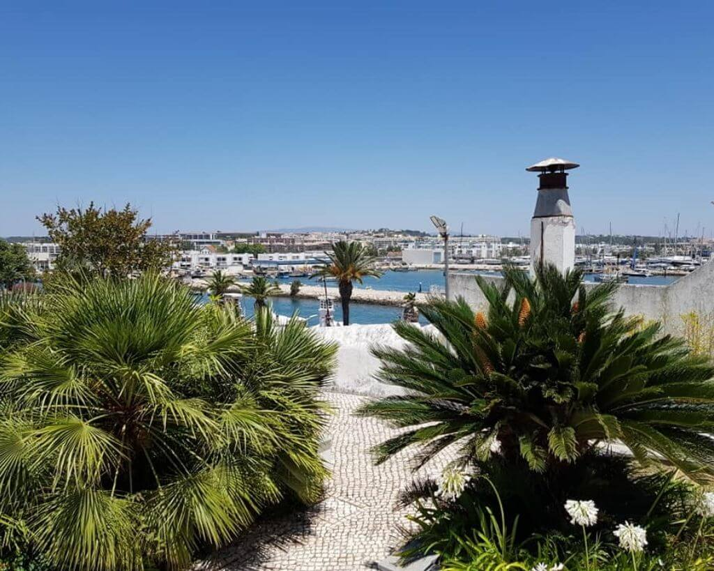 Tropical trees by the harbour in Portimao in Portugal
