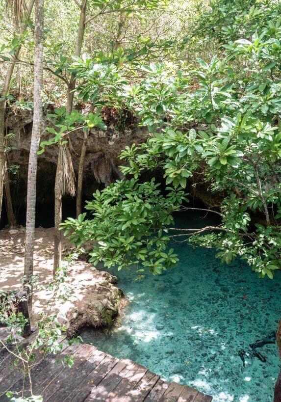Cenotes in Tulum 8